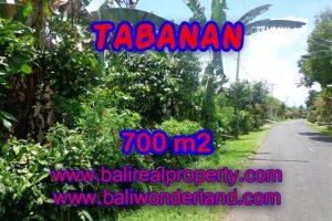 Property in Bali for sale, Fantastic view in Tabanan Penebel – TJTB090