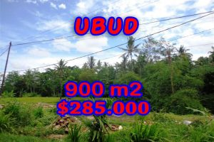 Land for sale in Bali, Fantastic rice fields view  in Ubud Tegalalang  – TJUB259