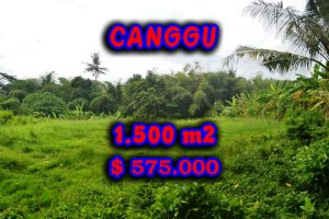 Land for sale in Bali, Amazing River View in Canggu pererenan – TJCG104