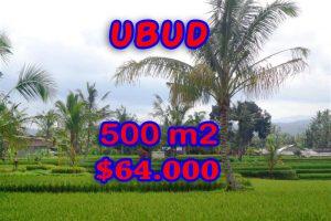 Amazing Property in Bali, Land for sale in Ubud Bali – TJUB257