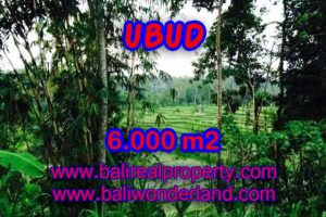 Land for sale in Bali, amazing view in Ubud Center – TJUB349
