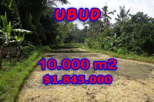 Astonishing Property in Bali, Land in Ubud Bali for sale – TJUB258
