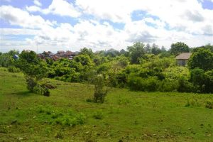 Land for sale in Bali 5,000 m2 in Jimbaran
