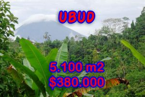 Property in Bali for sale, Spectacular land for sale in Ubud Bali  – 5.100 sqm @ $ 74