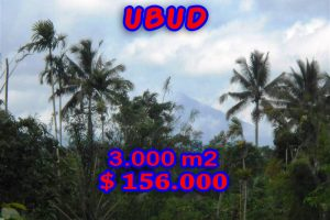 Land in Ubud for sale 30 Ares with By the river valley