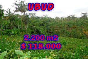 Land in Bali for sale, attractive view in Ubud Pejeng Bali – TJUB252