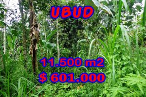 Exceptional Property in Bali, Land in Ubud Bali for sale – TJUB260