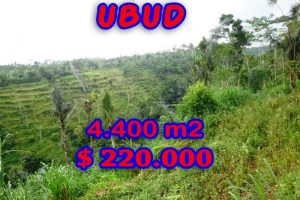 Property for sale in Ubud Bali, Interesting land for sale in Ubud Pejeng  – 4.400 sqm @ $ 50