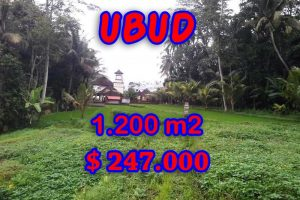 Fantastic Land for sale in Bali, Amazing rice fields view in Ubud Tegalalang – TJUB297