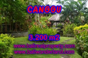Land for sale in Canggu, Fantastic view in Canggu Bali – TJCG129