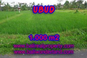 Land for sale in Bali, wonderful view in Ubud Bali – TJUB345