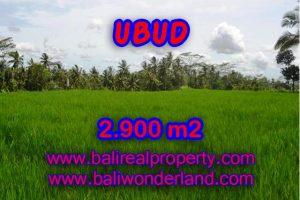 Land in Bali for sale, extraordinary view in Ubud Payangan – TJUB356
