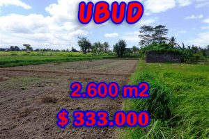 Land for sale in Bali, Magnificent rice fields and mountain view in  Ubud Center – TJUB300