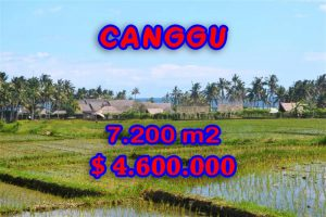 Land in Bali for sale, fantastic view in Canggu Bali – TJCG118