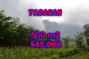 Land in Bali for sale, Amazing view in Tabanan Bali – TJTB063