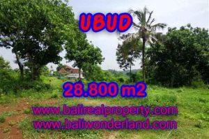 Land for sale in Ubud Bali, Magnificent view in Gianyar – TJUB366