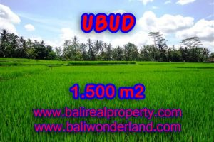 Land in Bali for sale, astounding view in Ubud Bali – TJUB383