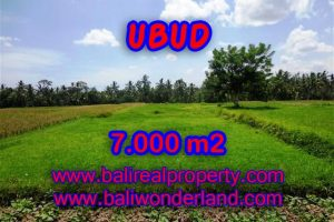 Land for sale in Bali, amazing view in Ubud Center – TJUB381
