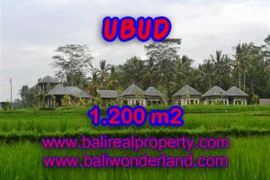 Fantastic Land for sale in Ubud Bali, beautiful rice field view in Central Ubud– TJUB365
