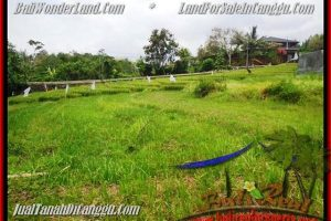 Affordable Canggu Pererenan BALI 1.000 m2 LAND FOR SALE TJCG161