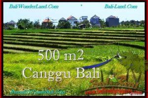 Affordable PROPERTY CANGGU 500 m2 LAND FOR SALE TJCG192