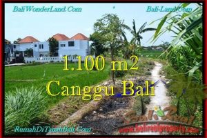 Exotic PROPERTY 1,100 m2 LAND SALE IN CANGGU TJCG193