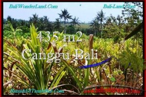 LAND FOR SALE IN Canggu Pererenan TJCG196