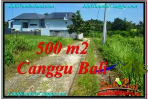 Magnificent CANGGU 500 m2 LAND FOR SALE TJCG201