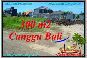 Affordable LAND SALE IN Canggu Brawa TJCG203
