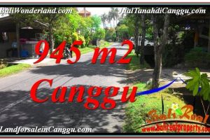 Magnificent 945 m2 LAND FOR SALE IN CANGGU TJCG210
