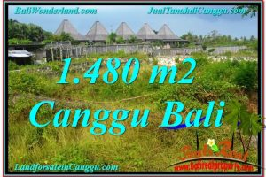 Beautiful 1,480 m2 LAND IN CANGGU FOR SALE TJCG212