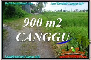 Beautiful PROPERTY 900 m2 LAND FOR SALE IN CANGGU BALI TJCG215