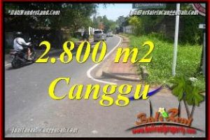 Magnificent LAND SALE IN CANGGU BATU BOLONG  BALI TJCG223