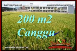 Affordable PROPERTY CANGGU BRAWA 200 m2 LAND FOR SALE TJCG229