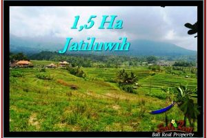 Magnificent PROPERTY 15,000 m2 LAND FOR SALE IN Tabanan Penebel TJTB225