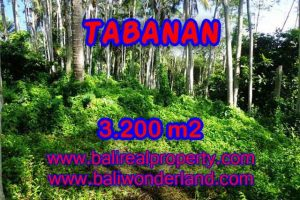 Land for sale in Bali, exceptional view in Tabanan Penebel – TJTB120