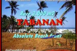 Beautiful PROPERTY LAND IN TABANAN FOR SALE TJTB168