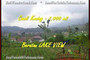 Beautiful 1.000 m2 LAND FOR SALE IN TABANAN BALI TJTB180