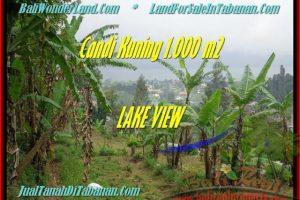 Exotic 1.000 m2 LAND SALE IN TABANAN TJTB181
