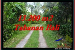 Affordable PROPERTY 13,200 m2 LAND SALE IN TABANAN BALI TJTB255