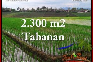 FOR SALE Affordable 2,400 m2 LAND IN TABANAN TJTB263