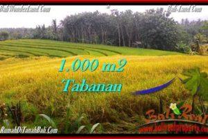 Exotic 1,000 m2 LAND FOR SALE IN TABANAN BALI TJTB273