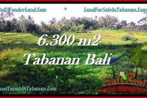 Magnificent PROPERTY TABANAN LAND FOR SALE TJTB275