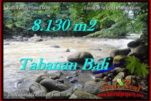 Exotic PROPERTY LAND IN TABANAN FOR SALE TJTB285