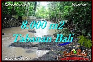 FOR SALE Affordable PROPERTY 8,000 m2 LAND IN TABANAN BALI TJTB287
