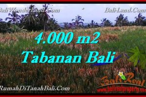 LAND FOR SALE IN Tabanan Selemadeg BALI TJTB288