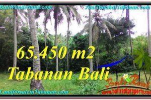 Exotic Tabanan Selemadeg BALI LAND FOR SALE TJTB290