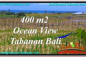 FOR SALE Beautiful LAND IN Tabanan Kerambitan BALI TJTB292