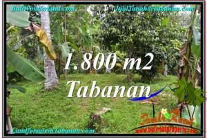 Exotic PROPERTY LAND FOR SALE IN TABANAN TJTB293