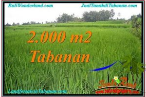 FOR SALE Exotic PROPERTY LAND IN Tabanan Penebel TJTB303